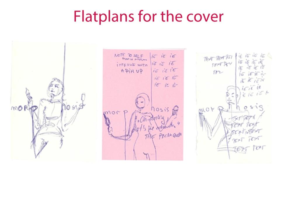 flatplansforthecover